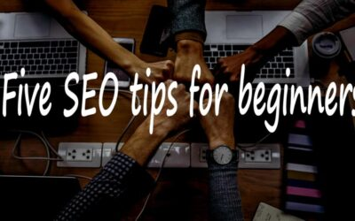 5 Pro Seo Tips For Beginners.